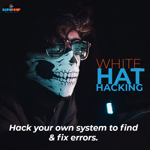 White Hat Hacking can help you find weak points in your cyber defenses, and plug them.